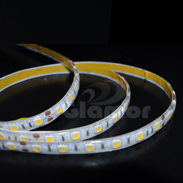 SMD LED Strip Light 12V 24V low voltage