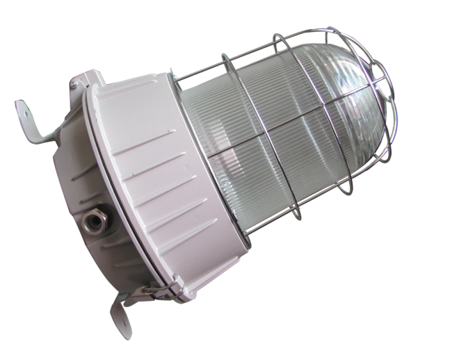 explosion proof luminaire Light