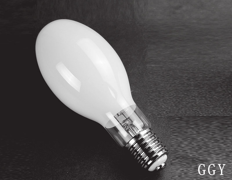 High Pressure Fluorescent Lamps (GGY 50-1000W)