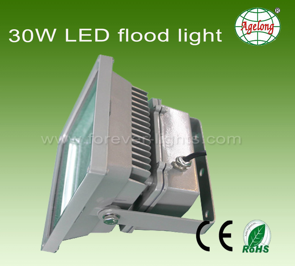 30w Led Floodlight With 50000hour Life Span Shenzhen Forever Light Flood Lamp High Power Black Case 1m Cable Wire