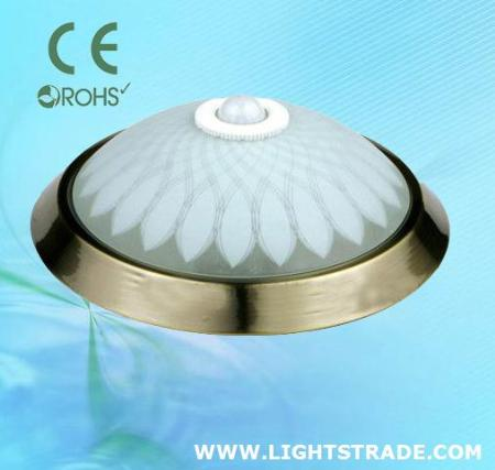 Ceiling Motion Light: PIR Ceiling Motion Sensor Lamp SL3002C in Ceiling Light,PIR Ceiling Motion  Sensor Lamp SL3002C detailed information,Lighting