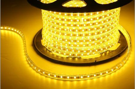 Firefly Led Strip 5050 220v Warm White In Strip Light
