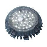 Outdoor LED Point Light For Decoration
