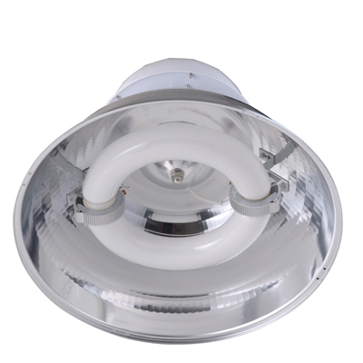 Low Frequency Energy Saving Induction Lamp High Bay Pendant