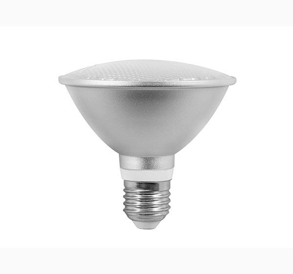 LED PAR cans PAR30 11W powerful