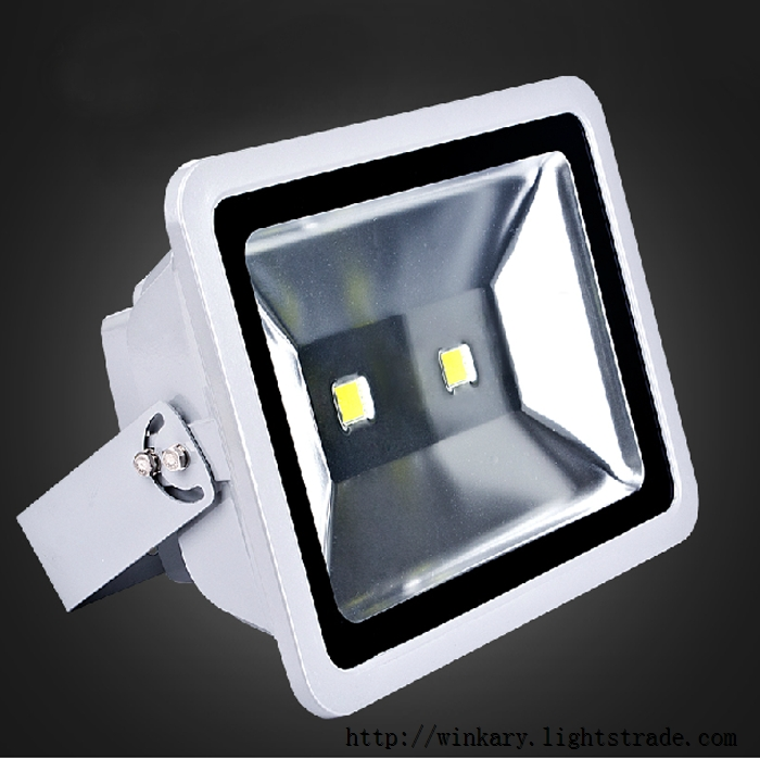 WKY-PRO-22 100W LED project light lamp