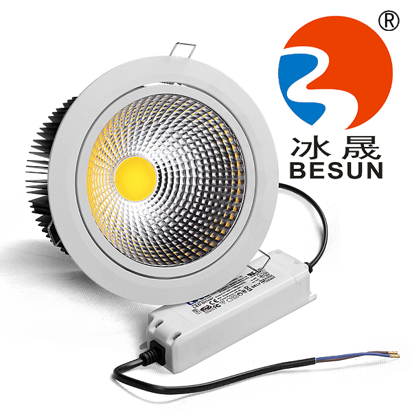 40W COB LED DOWNLIGHT(D40165)
