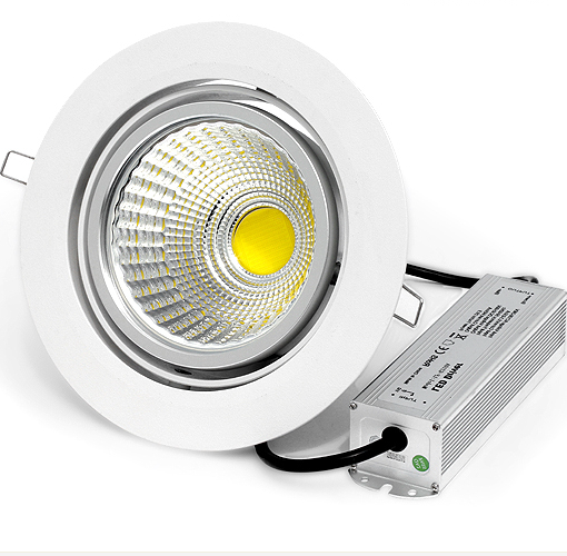 20W COB LED Downlight (D20170)