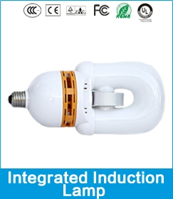 Integrated Induction Lamp