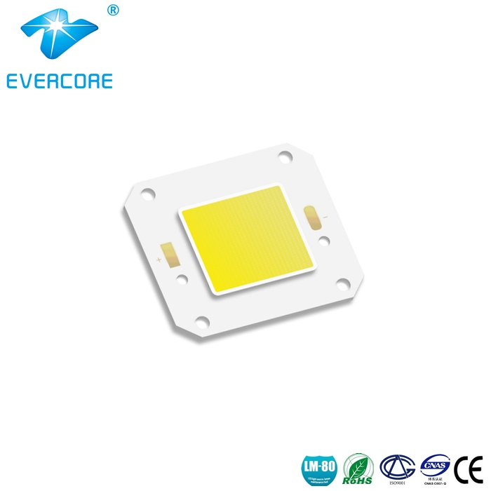 Outdoor Lighting LED COB Modules - ZH-H46