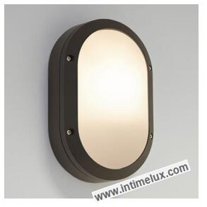 Modern oval led outdoor bulkhead light yuyao intimelux electric co modern oval led outdoor bulkhead light aloadofball