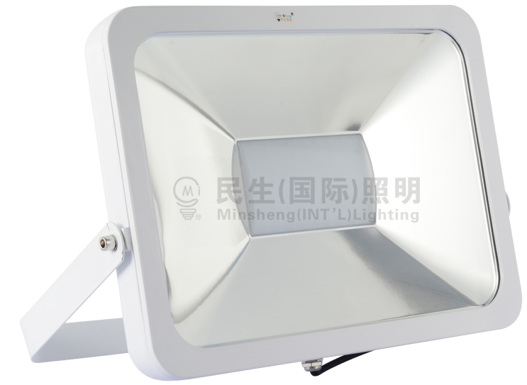 Floodlightwall Washer Of Minshengintlfloodlights Zhongshan Factory