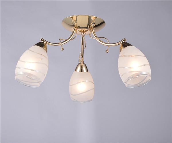 2016 Morden Ceiling lamp