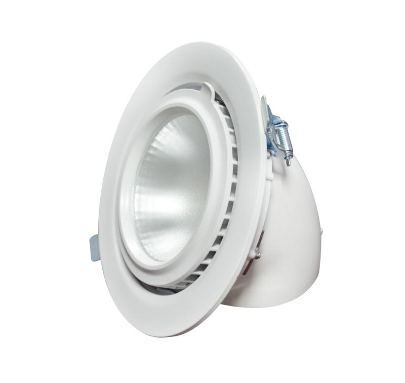 Shop lighting tiltable LED 30W gimbal downlight