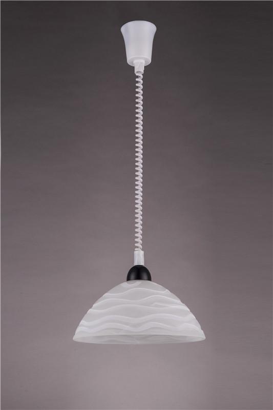 Flower glass shade glass pendant ligh