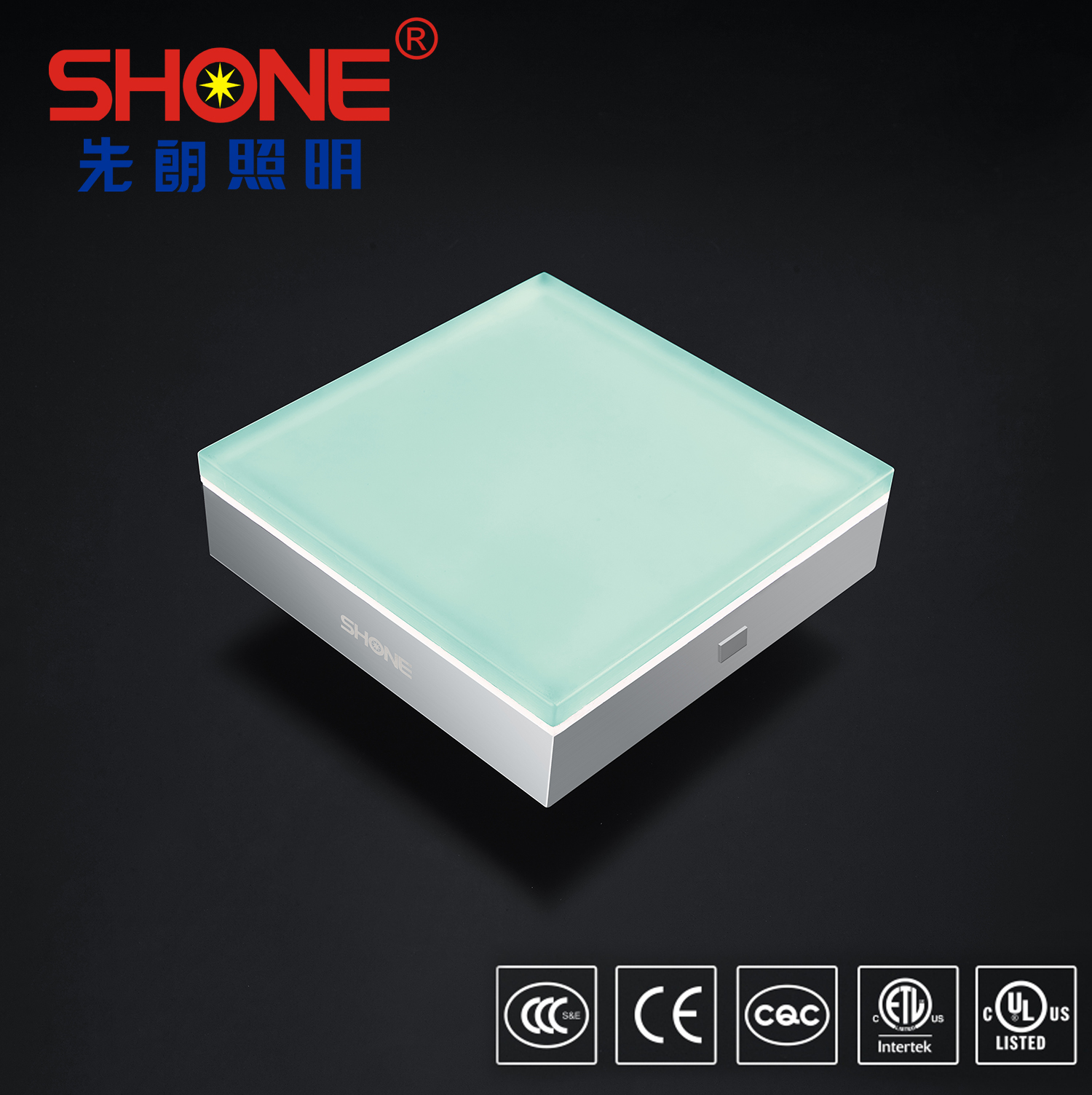 Shone Lighting 200x200 Square LED Brick LED Tile Light IP68 for Outdoor Lighting