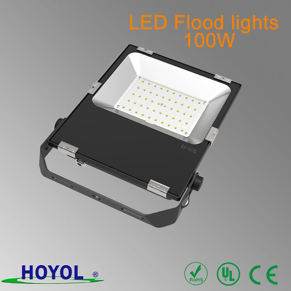 Hoyol bridgelux smd waterproof outdoor ip65 100w LED Flood lights