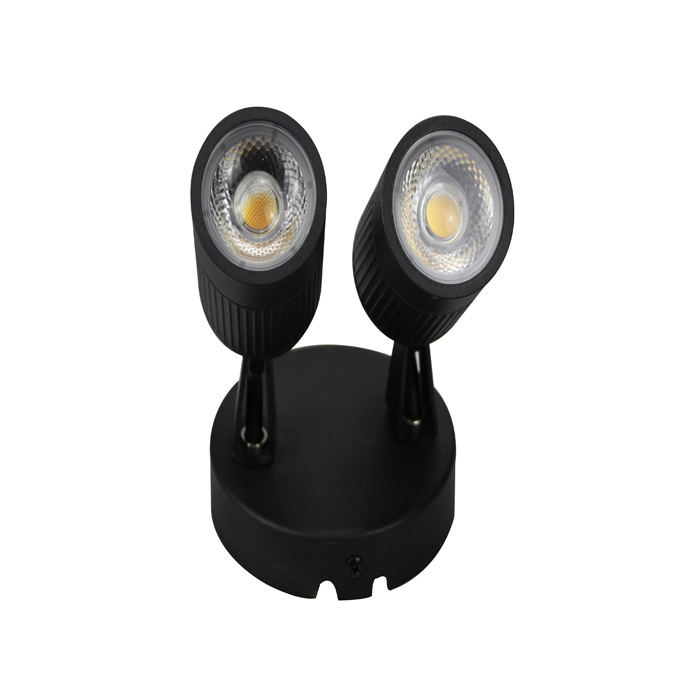 Outdoor double head wall light