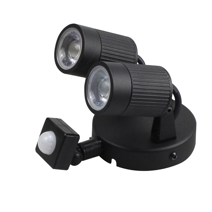 Outdoor double head induction wall light