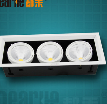 1PC COB 10W LED30W