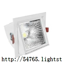 High luminous efficiency adjustable direction indoor square COB light source LED down light