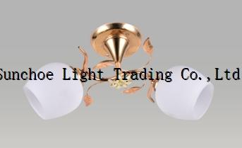 Cheaper ceiling lamp indoor lighting