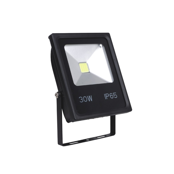 Floodlight CL430