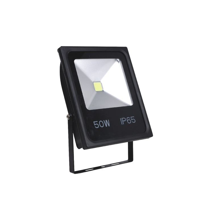 Floodlight CL450