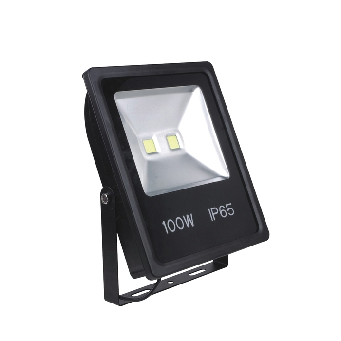 Floodlight CL4100