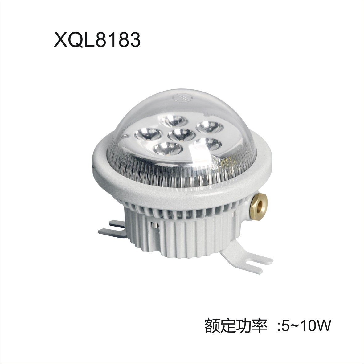 Explosion proof LED lighting used for gas and oil station