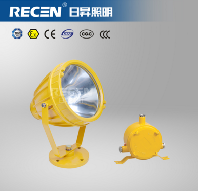 Explosion proof lamp