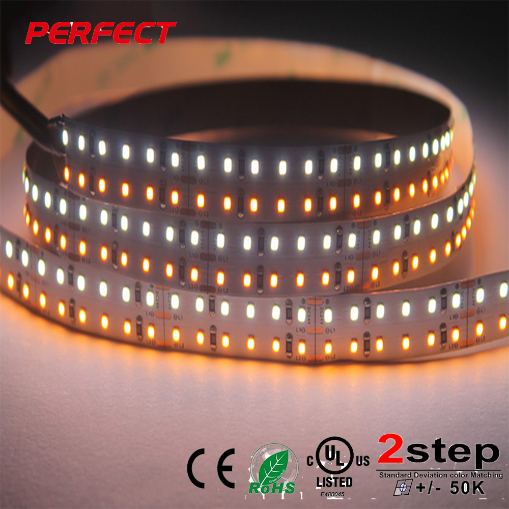heat resistant led strip light SMD 2216 led cct changeable two colors warm white and white led strip