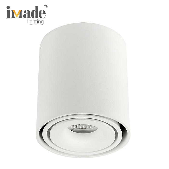 Indoor Surface Mounted Round Commercial 10W Ceiling COB LED down lamp