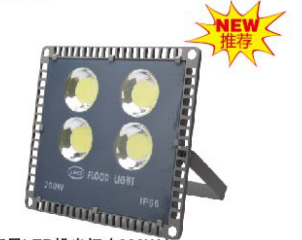 200w NEPTUNE LED FLOODLIGHT from China