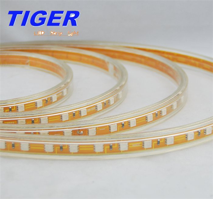 5050 Strip Light RGB 220V IP65