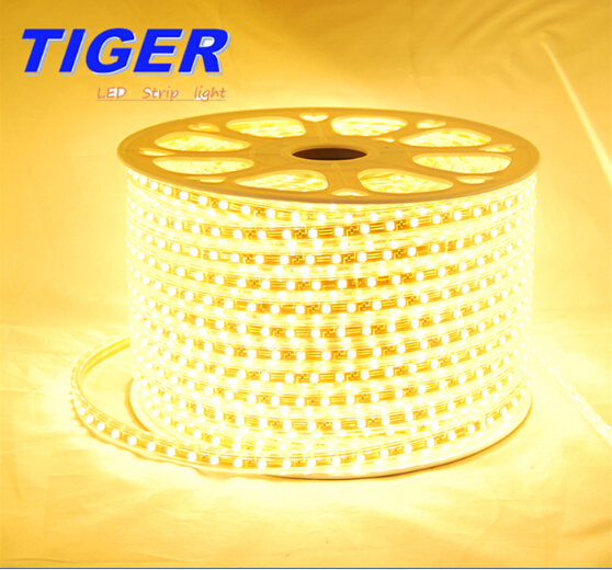 Strip Light 220V-5050-60-Strip-light(Gold PVC)