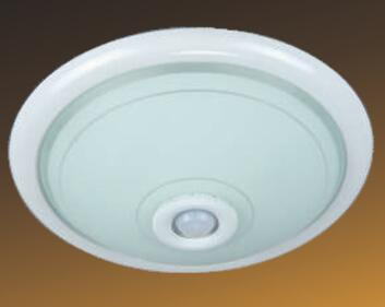 PIR SENSOR CEILING LIGHT