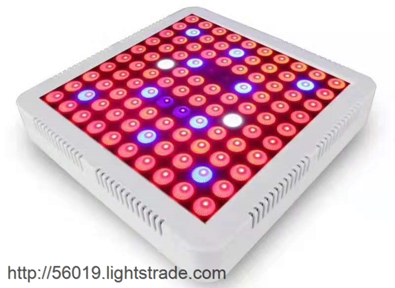 High Qulaity LED Plant Grow Light in Best Price