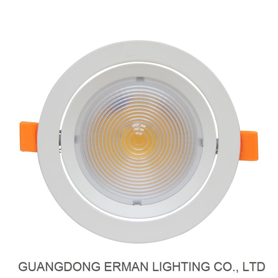 RML-37 COB Ceiling spotlight