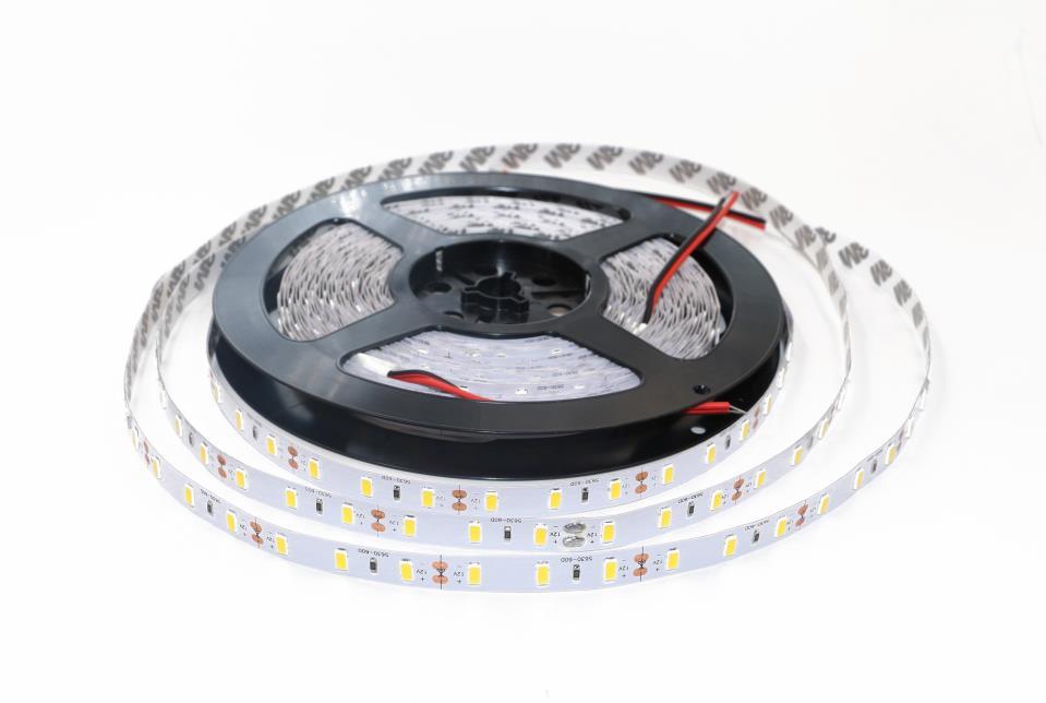 Flexible Flexible Light Strip DC12V 24V 60LEDS available OEM ODM