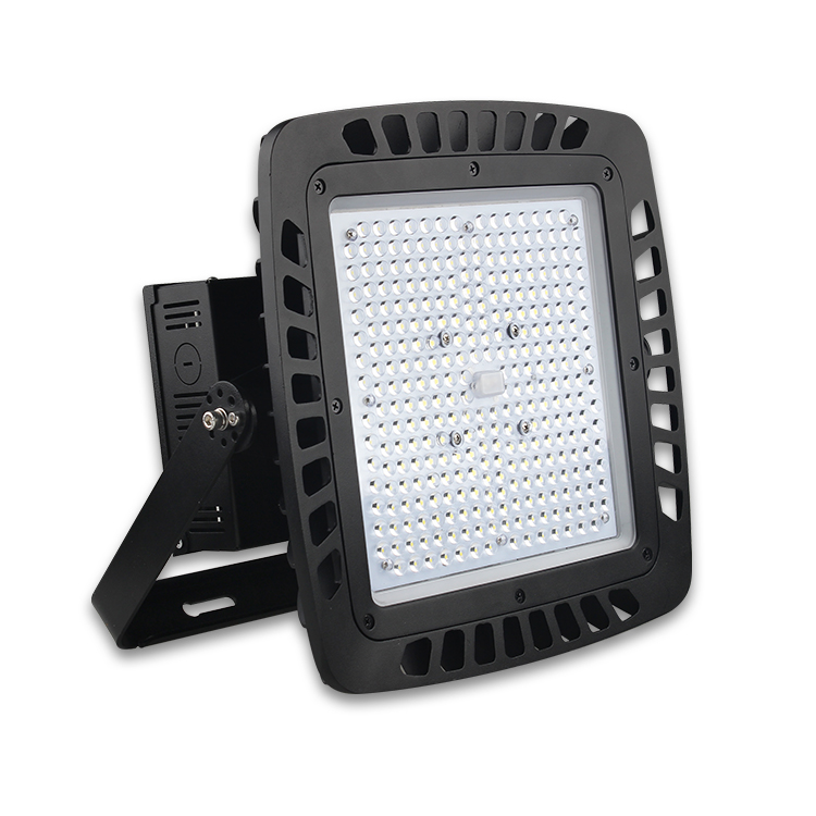 LED Flood Light(FL09)