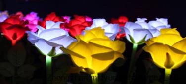 Plastic Rose Lantern