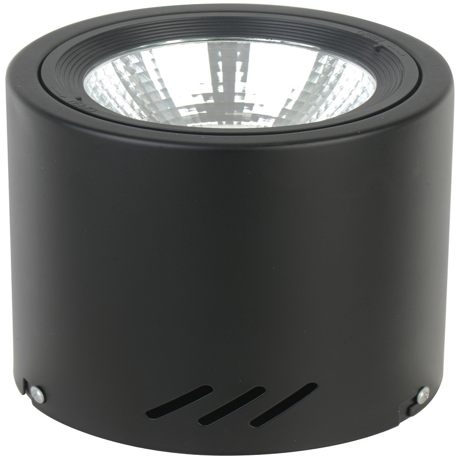LED Dowm Light AS02-20W