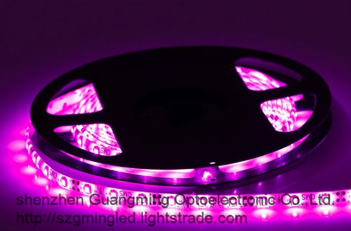 60 led m 3528 LED Strip Flexible DC12V LED Light Strip for Decorative Lighting