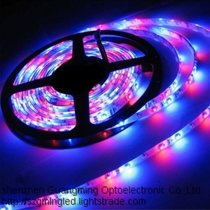 Flexible LED Strip Light 3528 220V LED Strip Outdoor LED Tree Lights