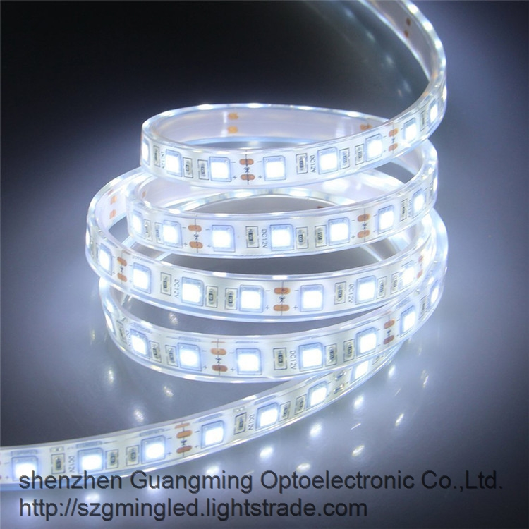 5050 led flexible strip light LED Pool light waterproof DC24V IP68 led strip light