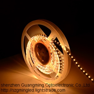 RGB warm white lighting Color Temperature Adjustable 5050 Bicolor Dimmable Led Strip Light