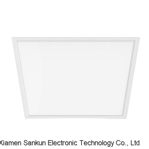 Side-lit Panel