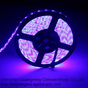 China led factory 5050 2835 3528 led strip light CE color lighting