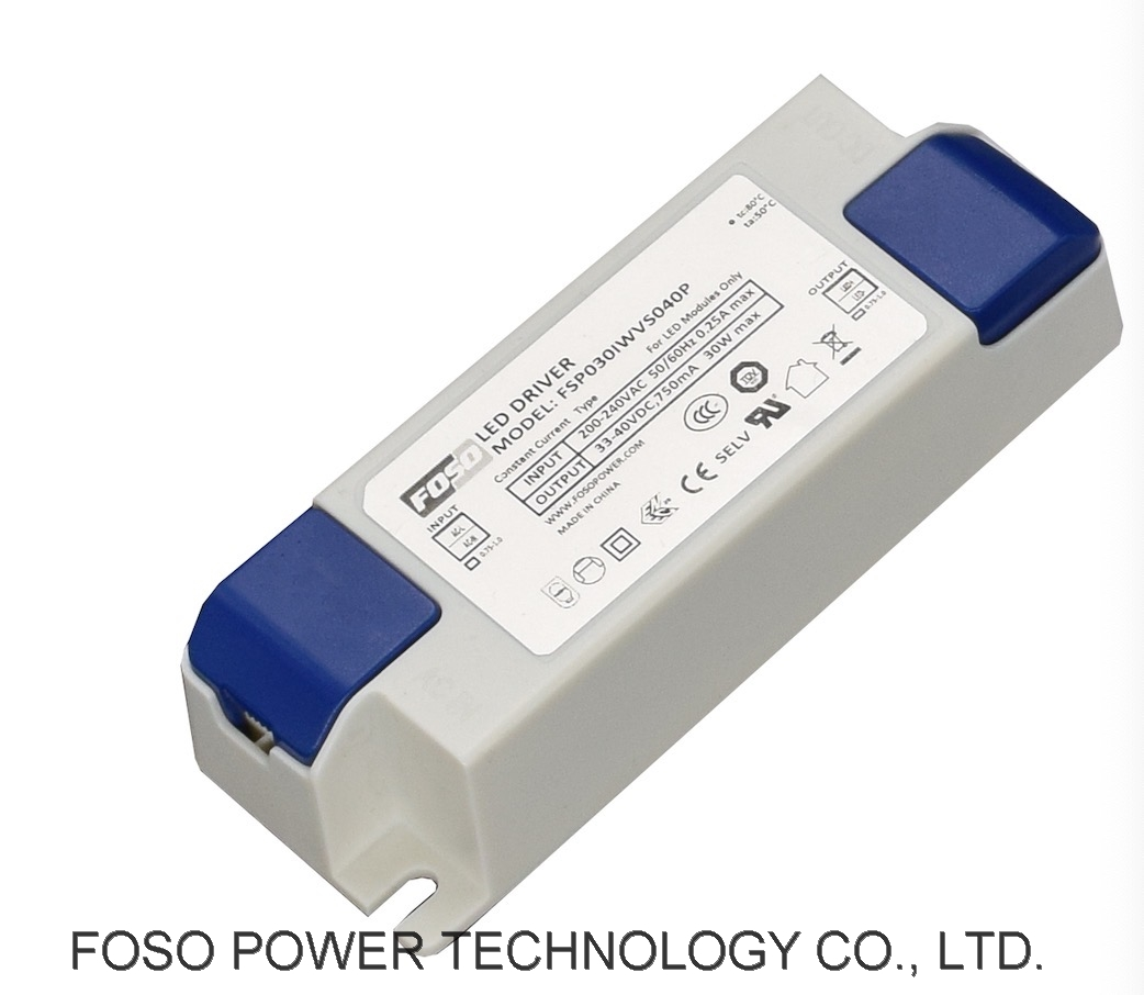 30W INDOOR LED DRIVER